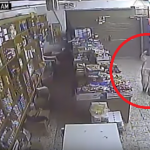 شاهد:شاب يسرق بقالة في قرية بمحافظة الليث