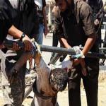 داعشي ينحر والديه بنينوى لرفضهما تجنيد شقيقيه في التنظيم