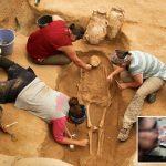 """اكتشاف مقبرة في """"عسقلان"""" يحل أحد الأسرار عن الفلسطينيين القدماء ومن أين أتوا"""