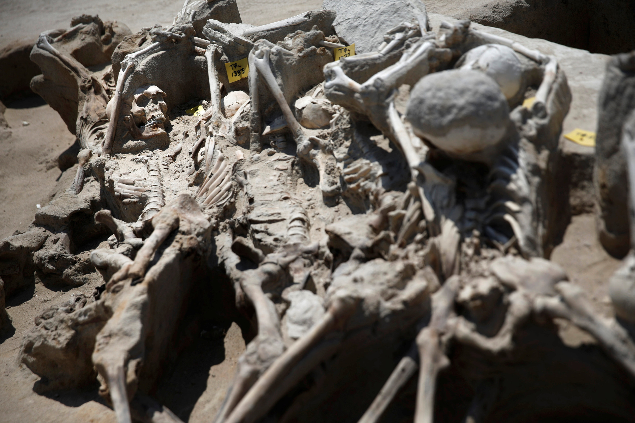 Skeletal remains, with iron shackles on their wrists, are piled on top of each other at the ancient Falyron Delta cemetery in Athens, Greece, July 27, 2016. Picture taken July 27, 2016. REUTERS/Alkis Konstantinidis