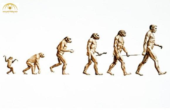 """نظرية جديدة """" القرد أصله إنسان""""… وليس العكس!"""