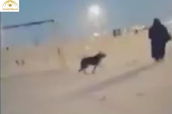 """بالفيديو :شاب يطلق  """"كلب"""" على عائلة فى نصف القمر بالمنطقة الشرقية"""