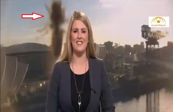 بالفيديو : شاهد كيف وضعت حشرة ضخمة مذيعة bbc في موقف محرج