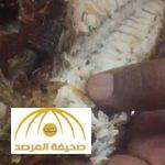 شاهد ماذا وجد هذا المواطن داخل سمكة اشتراها من مطعم شهير في جدة!