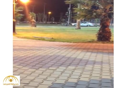 بالفيديو:شاب يمارس التفحيط  في حديقة بأبها