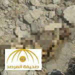 تفاصيل العثور على جثة حاج بمشعر مزدلفة – صورة