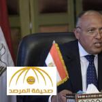بعد استخدام روسيا الفيتو ضد مشروع الهدنة في حلب.. الخارجية المصرية تعلق