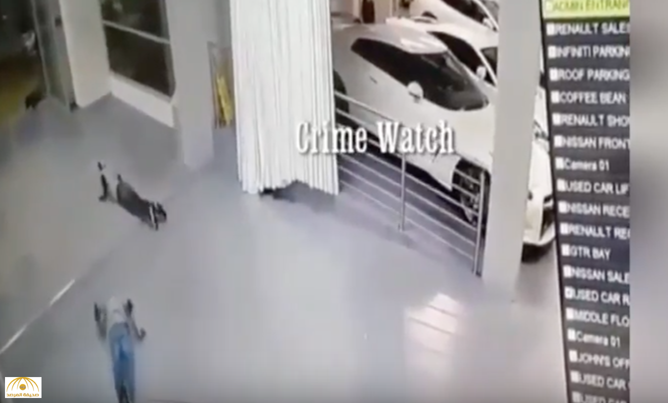 بالفيديو: شاهد كيف خدع لصوص نظام الإنذار في معرض للسيارات