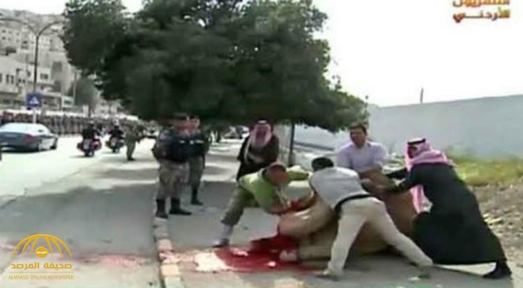 """""""أردني"""" يذبح جملاً أثناء مرور موكب الملك سلمان .. وهناك مظاهر أخرى للاحتفال بخادم الحرمين الشريفين ! – فيديو و صورة"""