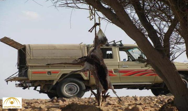 """ذهبوا في رحلة صيد.. """"عصابة"""" تسطو على رجال أعمال سعوديين وتسرق منهم سياراتهم و""""مليون ريال"""" بالسودان !"""