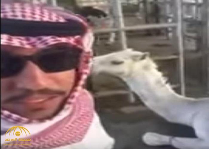 """شاهد: كيف احتفل مواطن بـ """"القصيم"""" بالقرارات الملكية"""