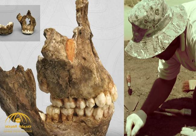 بالفيديو:العثور على بقايا جمجمة عمرها  28 مليون سنة في مكة