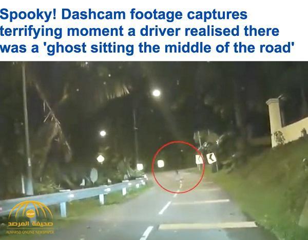 """بالفيديو: سائق يُفاجئ بـ """"شبح"""" يجلس بوسط الطريق بماليزيا.. شاهد ردة فعله !"""