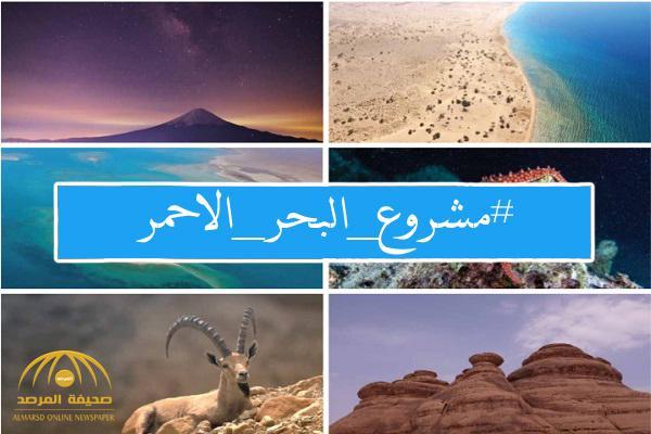 """هاشتاق """"مشروع البحر الأحمر""""  يتصدر  الترند الأول على العالم -صورة"""