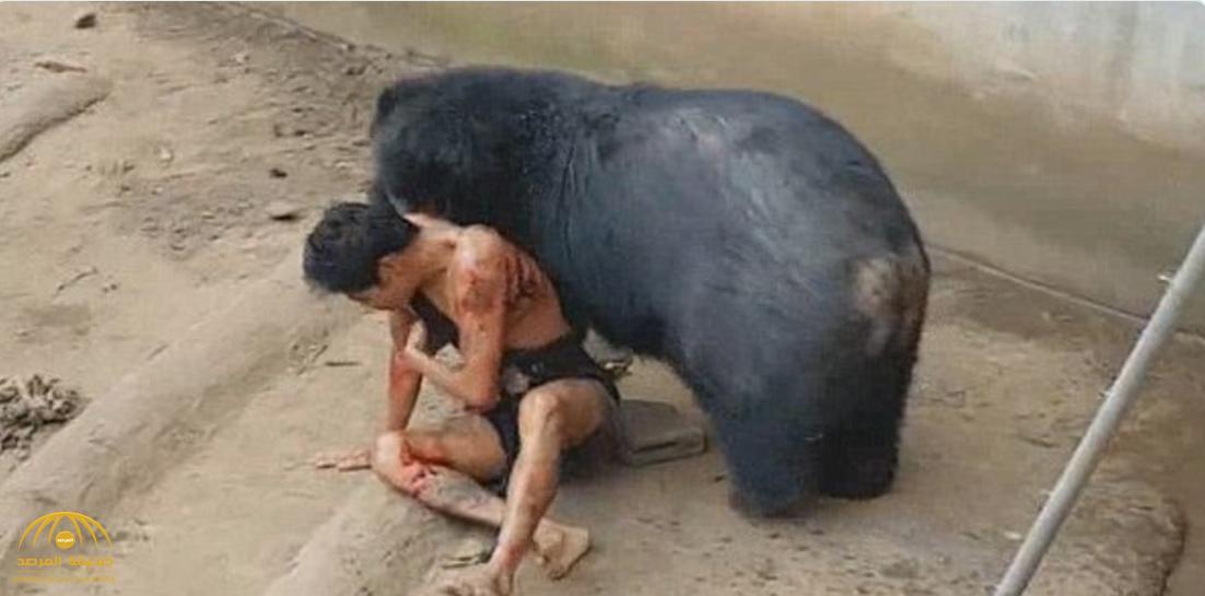 """شاهد بالفيديو والصور :  """"دب جائع""""  يهاجم  عامل  في حديقة بتايلاند"""