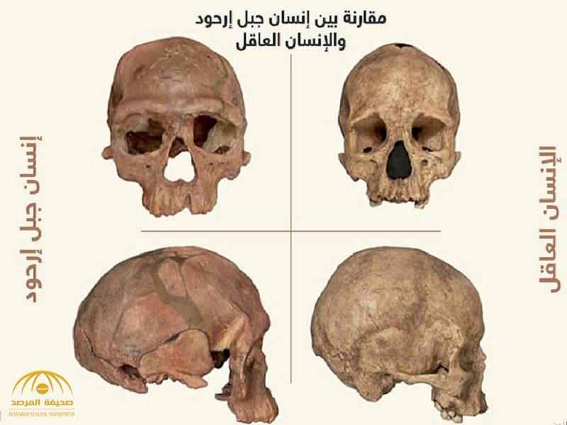 علماء: الإنسان أقدم مما يعتقد من قبل