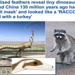 بالصور: العثور على ديناصور منقرض عمره 130 مليون سنة يثبت تطوره لحيوان في عصرنا الحالي!