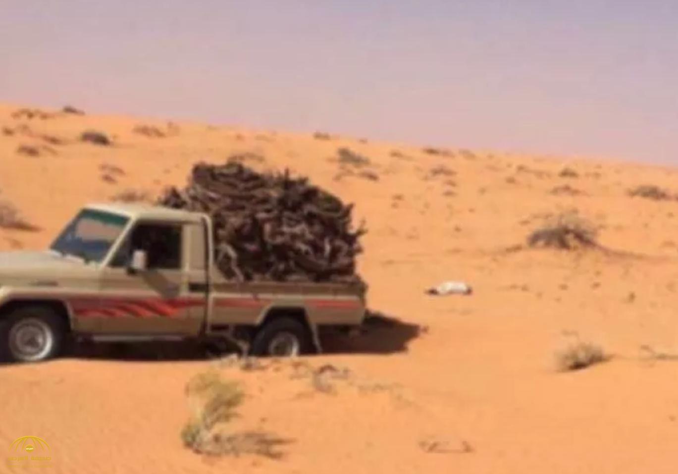 كان يحتطب وتعطلت سيارته.. شاهد: لحظة عثور طائرات فرق البحث على جثة مفقود حائل وسط الكثبان الرملية
