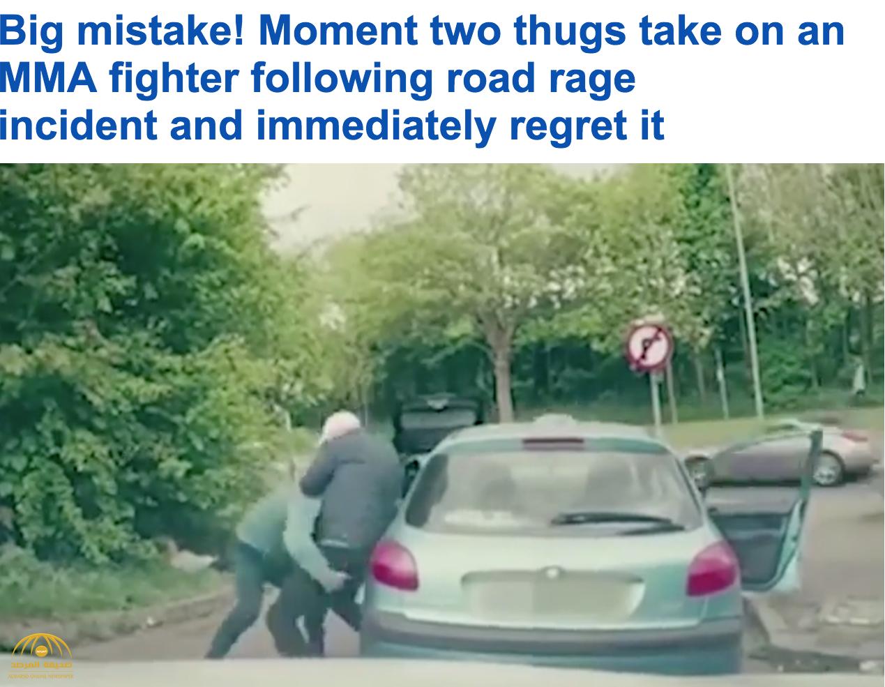 شاهد: نهاية غير متوقعة لاثنين من البلطجية حاولا الاعتداء على صاحب سيارة في الطريق