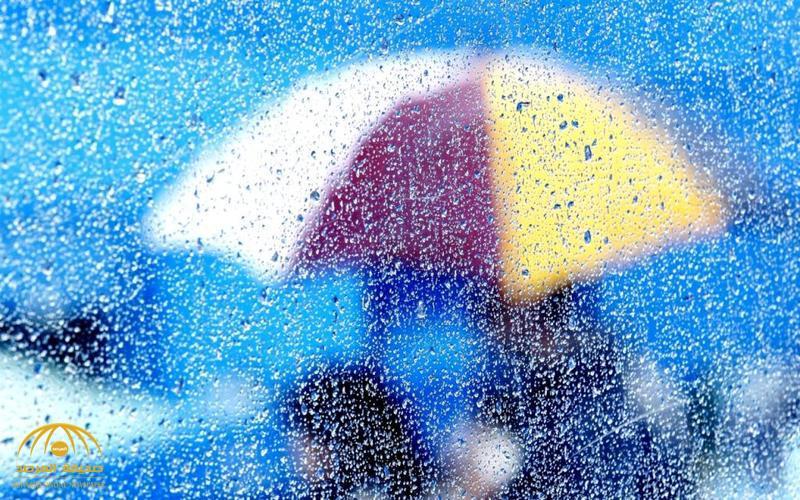 خبير طقس يكشف تعرض عدة مناطق لسحب ممطرة خلال الساعات القادمة.. وأخرى معرضة للأمطار منتصف الأسبوع القادم!