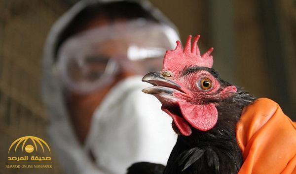 """الزراعة تؤكد إصابة عدد من الطيور بمرض إنفلونزا """"إتش5إن5"""" في الرياض.. وتوجه رسالة عاجلة للمواطنين"""