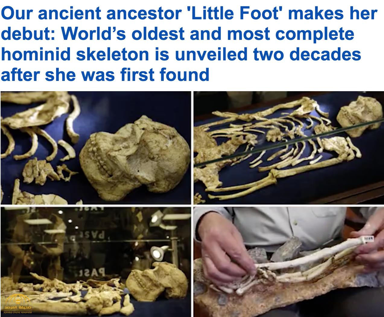 """اكتشاف """"هيكل عظمي بشري متكامل"""" عمره 4 ملايين عام!"""