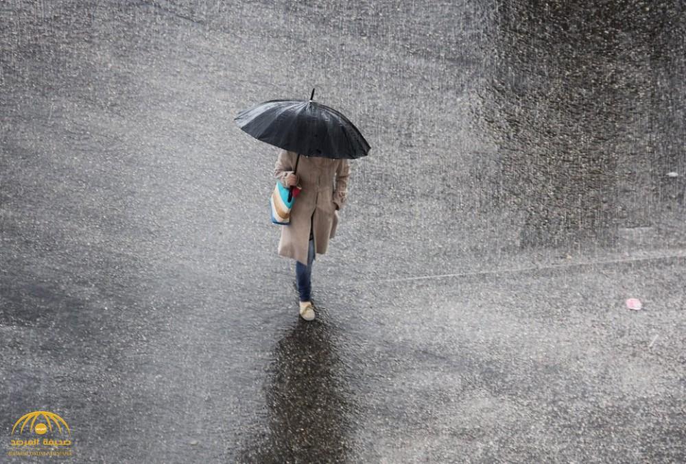 أمطار رعدية ورياح سطحية وانعدام رؤية.. تعرف على حالة الطقس اليوم بعدة مناطق بالمملكة!