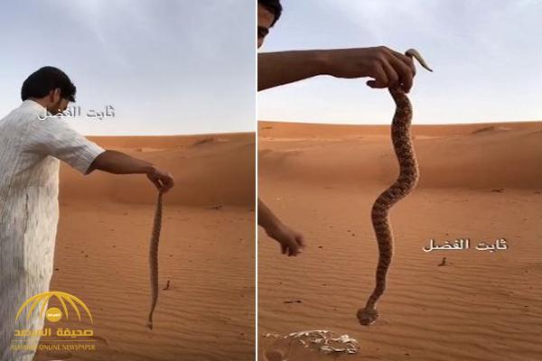 """فيديو .. شاهد ..كيف أمسك شاب سعودي بأفعى """"أم جنيب"""" بيده .. وقتلها بطريقة غريبة!"""
