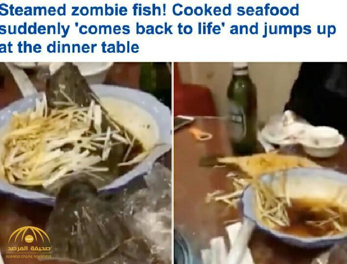 بالفيديو.. سمكة مطهية تعود للحياة وتهرب من الطبق