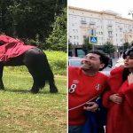 بعد بكائها على المنتخب المغربي… هذا ما تفعله مريم حسين في روسيا – فيديو