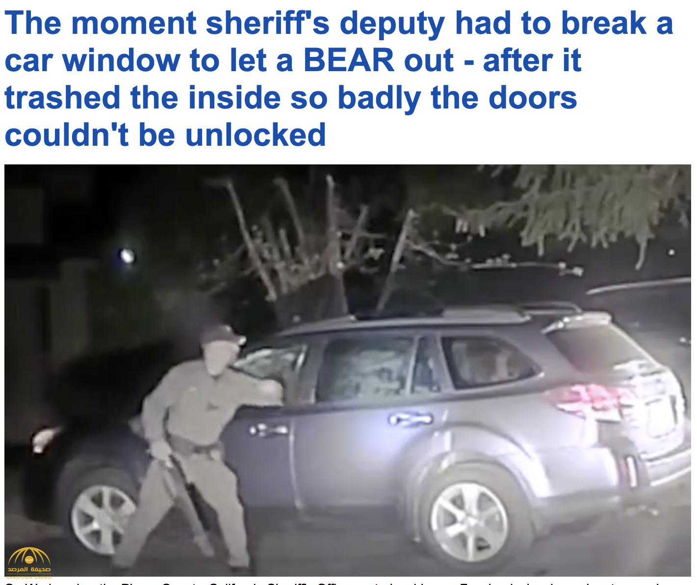 بالفيديو: شرطي في تاهو الأمريكية يقوم بعملية إنقاذ غريبة داخل سيارة متوقفة!