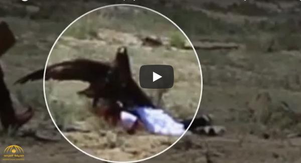بالفيديو: نسر عملاق يحاول خطف طفلة ويصيبها بجروح بليغة