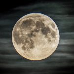 علماء: بداية ظهور الكائنات الحية على الأرض نشأت في البحر  وبسبب القمر تغير كل شيئ !