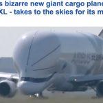 بالفيديو و الصور: شاهد لحظة اقلاع أضخم طائرة في العالم  على شكل الدولفين لأول مرة