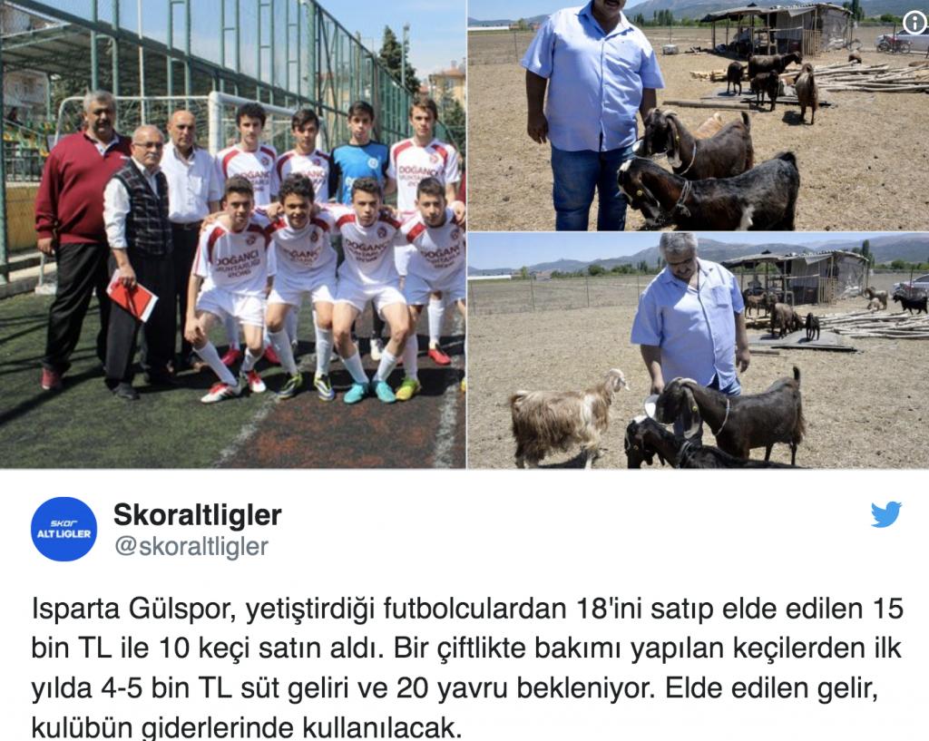شاهد بالصور.. نادي كرة قدم تركي يبيع 18 لاعبا ليشتري 10 رؤوس ماعز تنتج الحليب!