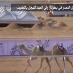 """هاشتاق """"شعار نادي النصر يفوز بالهجن"""" يصل """"ترند"""".. وهكذا تفاعل معه المغردون!"""