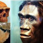 دراسة استرالية توضح سبب غريب لإنقراض أحد فصائل الإنسان البدائي غرب الرياض !