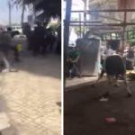 بالفيديو.. لحظة هروب عجل هائج قبل ذبحه بمصر!