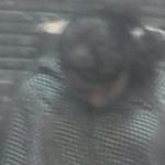 """فتاة مصرية تغيب داخل حمام """"مطعم شهير"""" بشارع الهرم .. والعمال يتفاجئون بهذا المشهد الصادم!-صورة"""