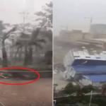 """شاهد: إعصار """"مانكوت"""" المدمر يقلع الشجر ويجرف البشر والحجر!"""