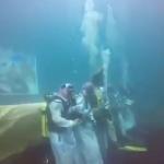 """شاهد: سعوديون يؤدون """"العرضة"""" في قاع البحر احتفالًا باليوم الوطني!"""