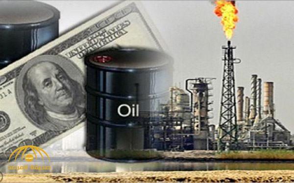 """منظمة الدول المصدرة للنفط """"أوبك""""  تجني 428 مليار دولار في 7 شهور.. وهذا نصيب السعودية !"""