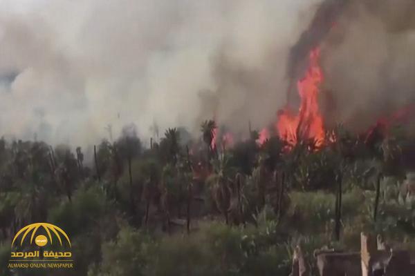 """""""الدفاع المدني"""" يكشف ملابسات مقطع اشتعال النيران في نخيل خيبر"""