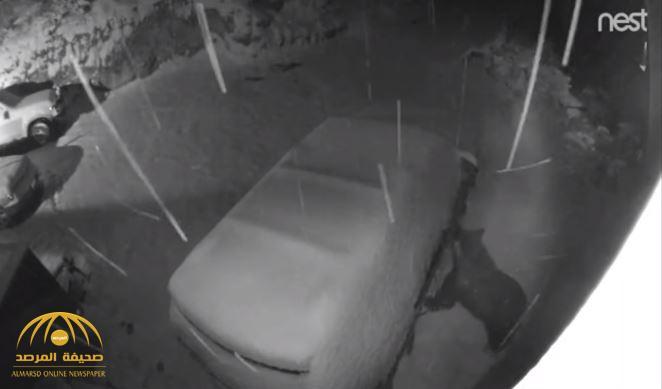 لن تصدق ما تراه .. شاهد : دب أسود يفتح باب سيارة متوقفة ليلاً في ولاية أمريكية !