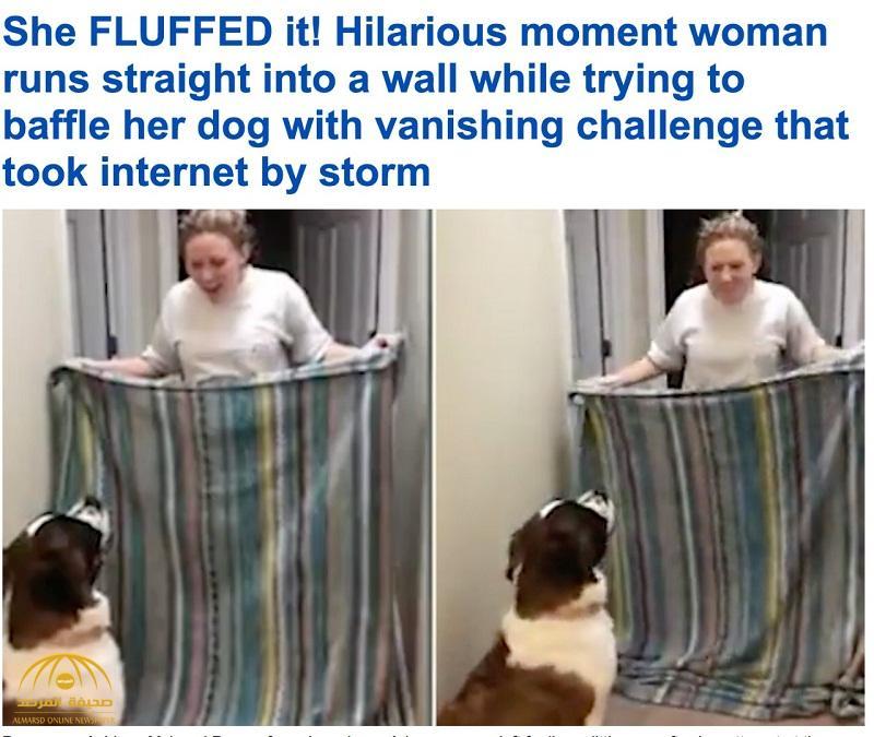 شاهد .. فيديو لردة فعل كلب بعد ارتطام صاحبته بالجدار يحقق 16 مليون مشاهدة