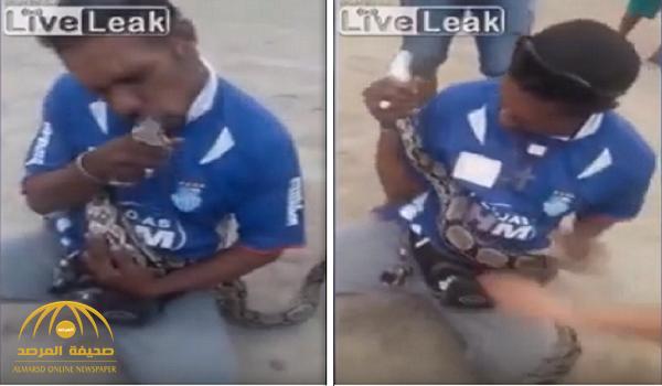 بالفيديو.. رجل يحاول تقبيل ثعبان ضخم والنتيجة صادمة
