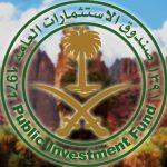 """صندوق الاستثمارات العامة يعلن عن """"مشروع تطوير وادي الديسة"""" ضمن محمية الأمير محمد بن سلمان"""
