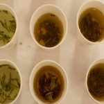 """8 فوائد مبهرة تجعلك لن تتوقف عن شرب """"الشاي الأخضر"""""""