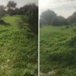 بالفيديو… شاهد كيف تحولت روضة خريم بالرياض بعد هطول الأمطار قبل عدة أيام ؟