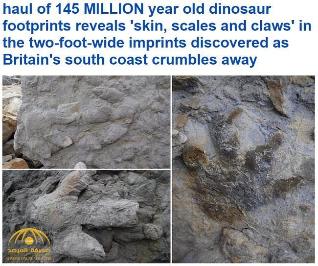 عوامل تعرية تكشف عن بقايا ديناصورات عاشت منذ ملايين السنين في بريطانيا – صور